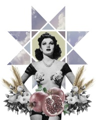 collage16