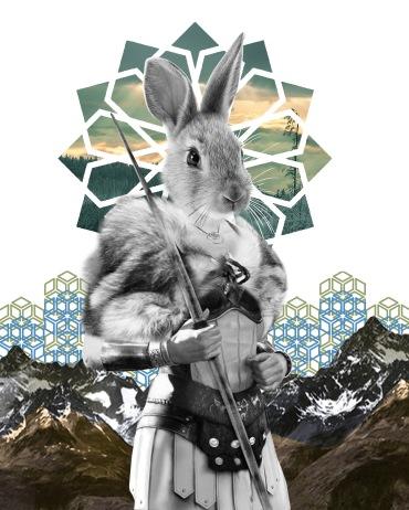 Quiet Rabbit Warrior