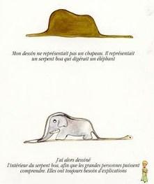 Elephant in a Snake